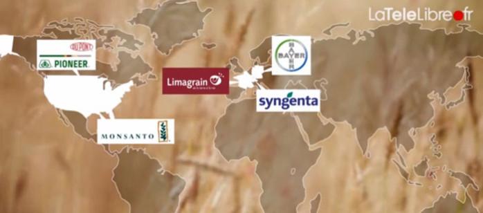 graines 5 multinationales