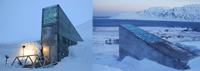 graines Svalbard Global Seed Vault