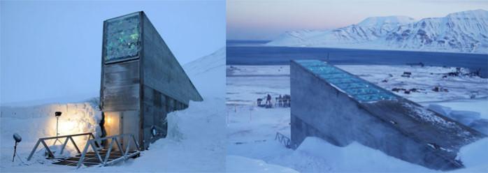 graines Svalbard Global Seed Vault