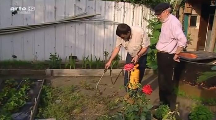 les graines du potager bientôt interdites