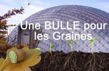 une bulle en verre pour des graines